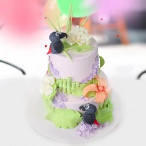 کیک پرندگان در باغ